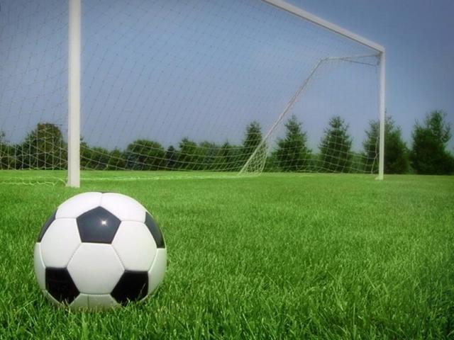 Футбольный мяч около ворот