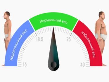 Как рассчитать индекс массы тела