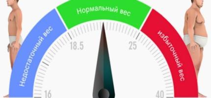 Индекс массы тела: расчет, интерпретация значений и определение рисков для здоровья