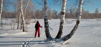 Лыжные прогулки для здоровья взрослых и детей