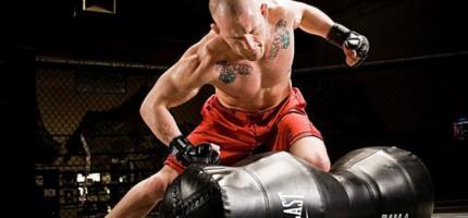 Лучшая экипировка и защита для бокса и смешанных единоборств: обзор ведущих брендов