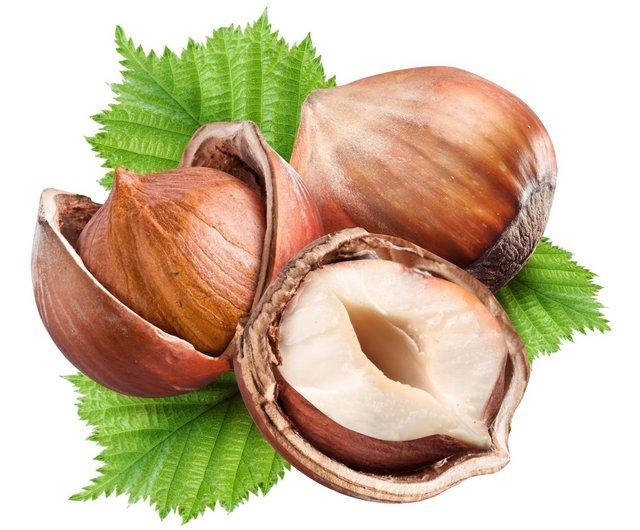Лесной орех (фундук)