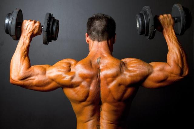 Упражнения на плечи в тренажерном зале и дома