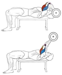Упражнение на трицепс: французский жим лежа