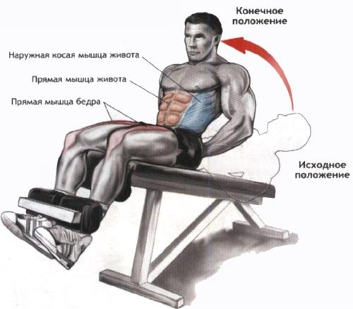 Подъем корпуса на наклонной скамье